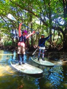 石垣島&西表島の旅 4日目 ☆マングローブの森